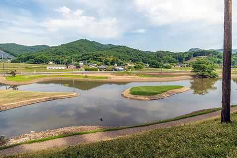 樺崎寺浄土庭園
