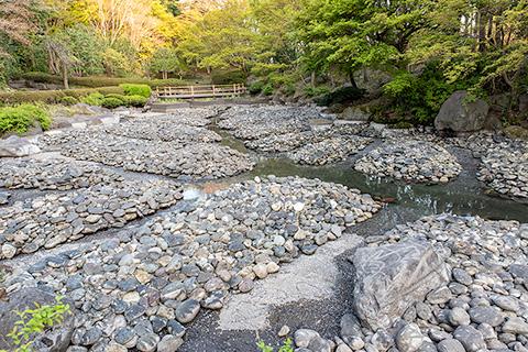 栃木県中央公園 日本庭園